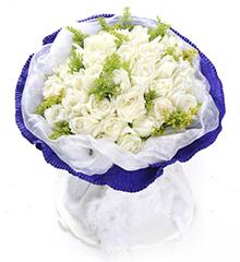 无限的爱:33枝白玫瑰