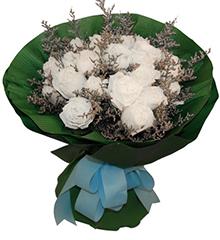 微笑天使:22枝白色玫瑰