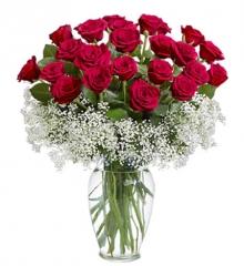 爱情故事:21枝红玫瑰,绿叶,满天星围绕