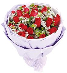 炽恋:21枝红玫瑰