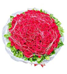 让我爱你:108枝红玫瑰