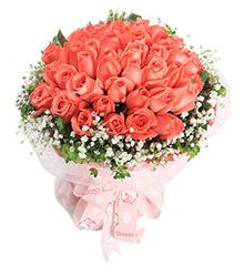 爱的真谛:33枝粉玫瑰+黄莺+满天星