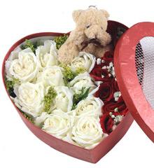 继续爱:18枝白玫瑰,11枝红玫瑰