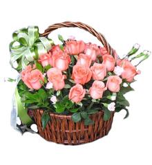 清新祝福:30朵粉色玫瑰