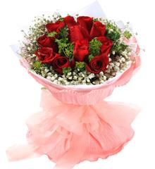 爱海滔滔:昆明红玫瑰11枝