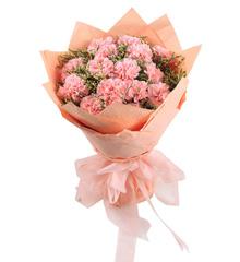 母爱如山:粉色康乃馨11枝