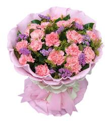 守望:粉色康乃馨19枝