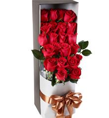 杜鹃圆舞曲:鲜花速递生日礼物22朵玫瑰