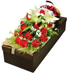 你是我的骄傲:康乃馨礼盒鲜花速递