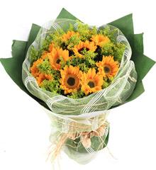 祝你快乐: 9枝向日葵父亲节教师节礼物鲜花速递