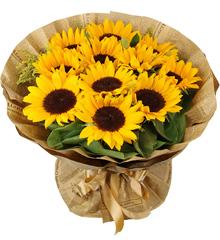 向暖绽放:11枝向日葵花束、生日、父亲节鲜花速递