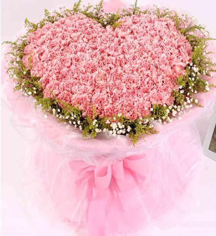 99支粉色康乃馨