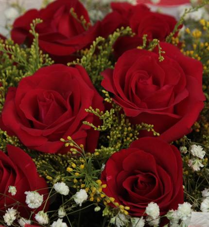 爱的誓言:11枝红玫瑰,黄莺、满天星适量