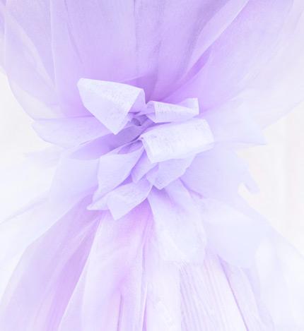 Love风景线:11枝粉玫瑰