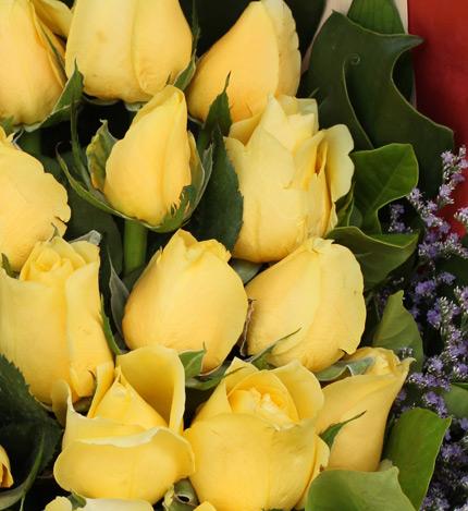 原谅我:19枝黄玫瑰
