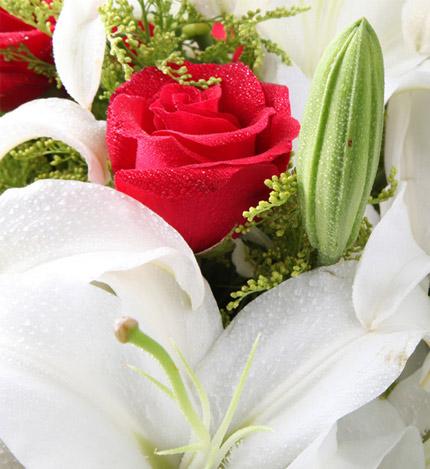 一直陪着你:11枝红玫瑰,6朵百合