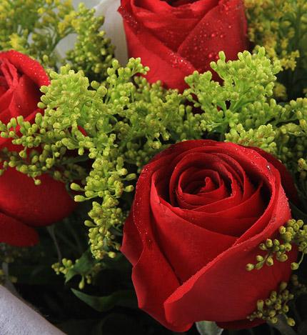 感恩的心:11支红玫瑰,2支多头白香水百合