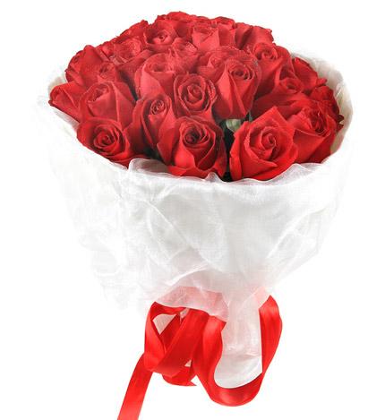 每一面都美:33支红玫瑰