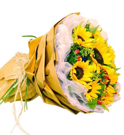 沉默的爱:9枝向日葵